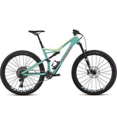Specialized expert 29/6 fattie