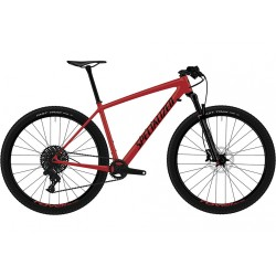 Specialized HT Epic Comp